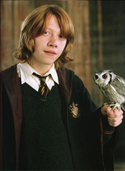 Ron_Weasley_HP4_01